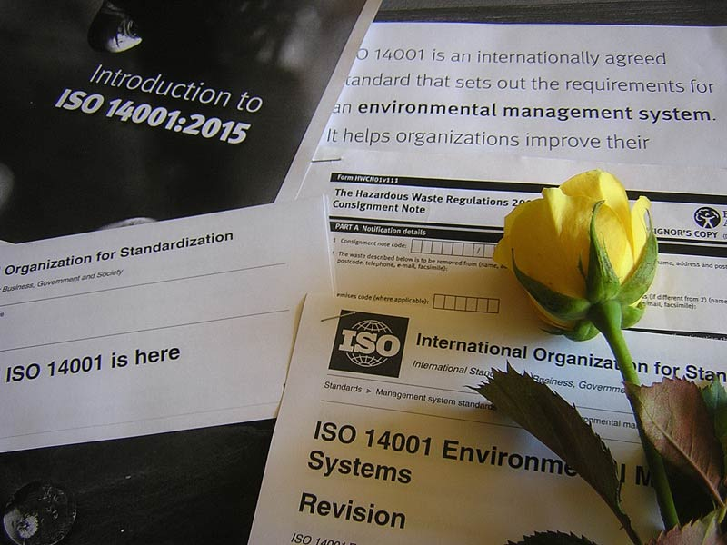 The Search for a ISO 14001:2015 Migration Free PDF Download, and Some Help